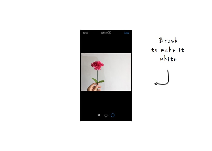 The Easiest Way to Make a White Background for Instagram Photos