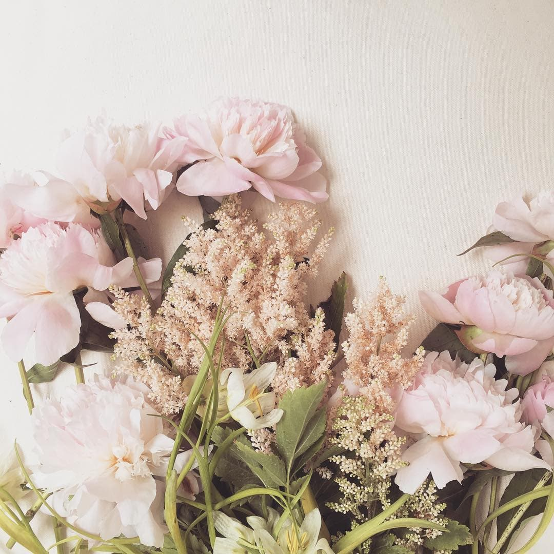 How To Make An Instagram Feed Like Lauren Conrad? (filter