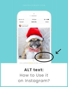 ALT text on Instagram Photos: How to use it Like a Professional?
